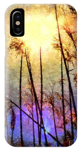 Golden Sun Rays On Beach Grass IPhone Case