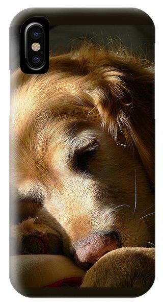 Golden Retriever Dog Sleeping In The Morning Light  IPhone Case