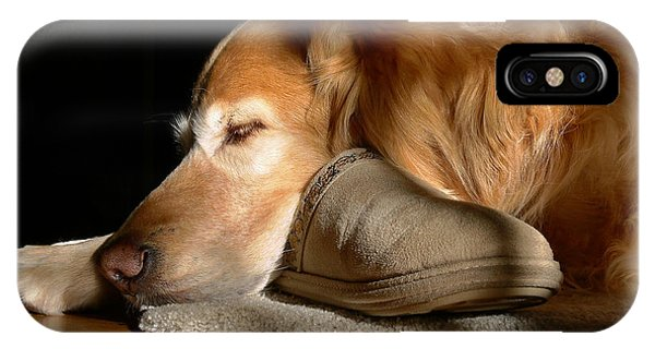 Golden Retriever Dog With Master's Slipper IPhone Case