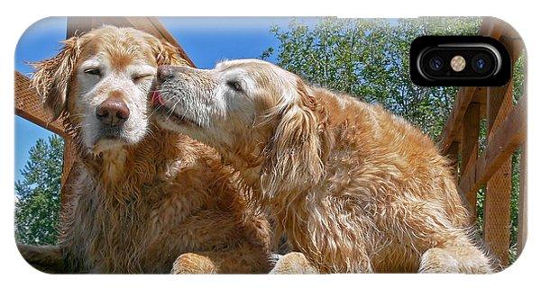 Golden Retriever Dogs The Kiss IPhone Case
