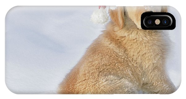 Golden Retriever In Santa Hat IPhone Case