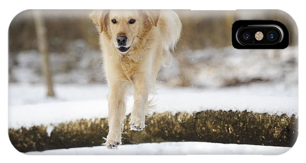 Golden Retriever Jumping IPhone Case