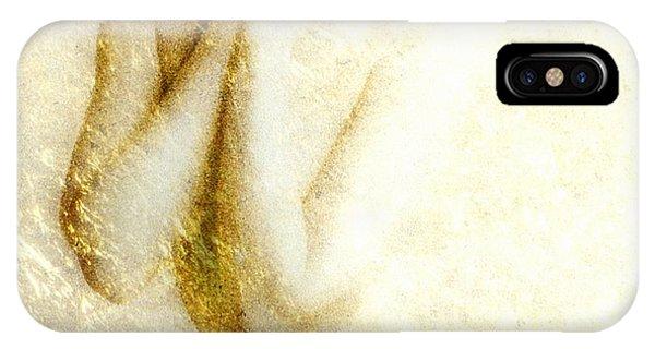 Golden Shower IPhone Case