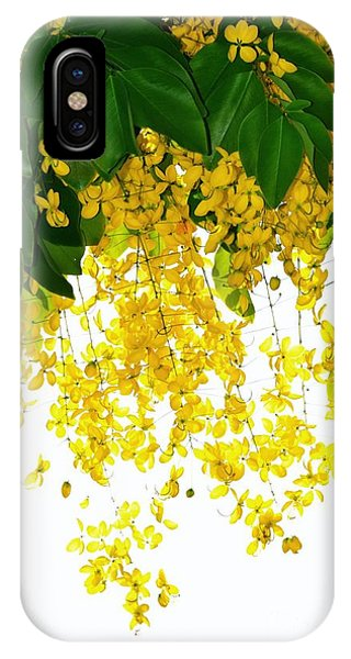 Golden Showers Flowers IPhone Case