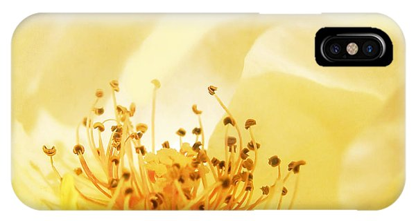 Golden Showers Rose IPhone Case