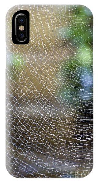 Far North Queensland iPhone Case - Golden Silk Orb Weaver's Web Design by Kerryn Madsen-Pietsch