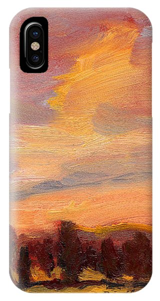 Golden Splendor IPhone Case