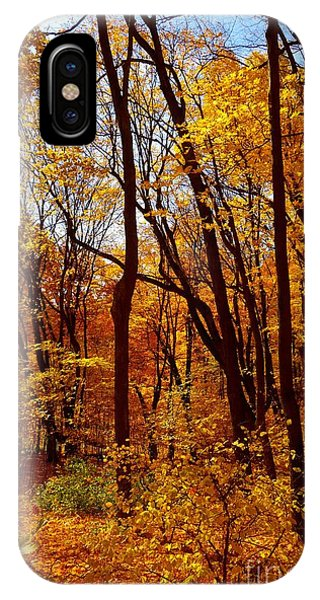 IPhone Case featuring the photograph Golden Splendor by Jacqueline Athmann