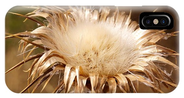 Golden Thistle IPhone Case