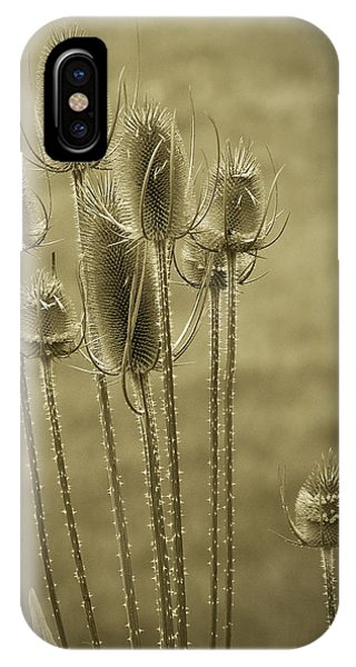 Golden Thistles IPhone Case