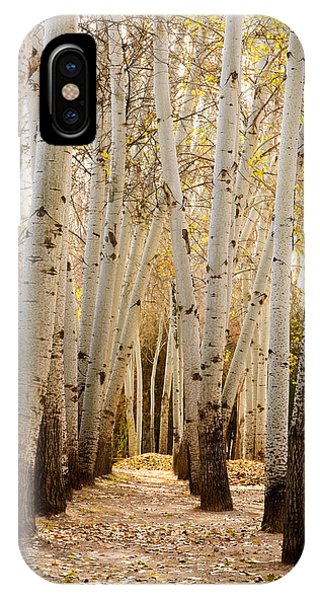 Golden Trees Dunhuang China IPhone Case