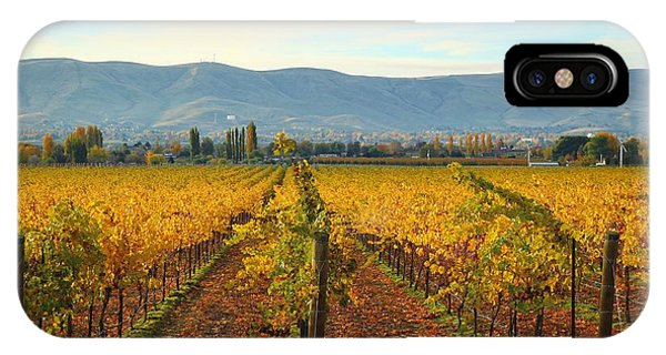 Golden Vineyards IPhone Case