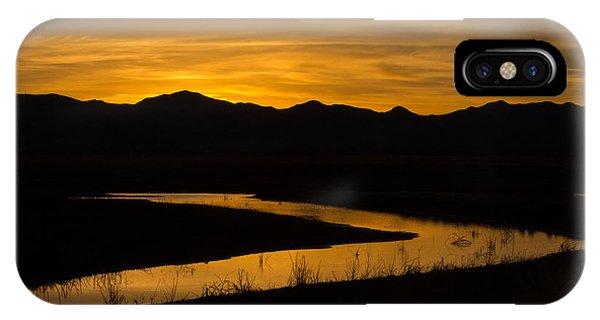 Golden Wetland Sunset IPhone Case