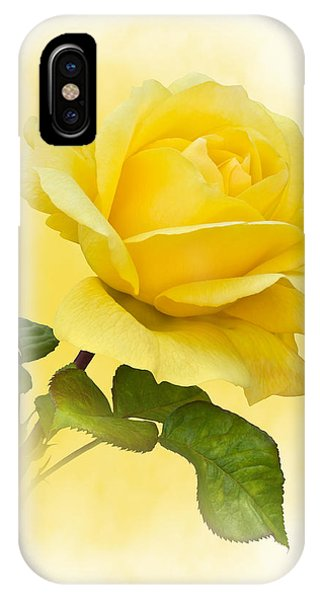 Golden Yellow Rose IPhone Case