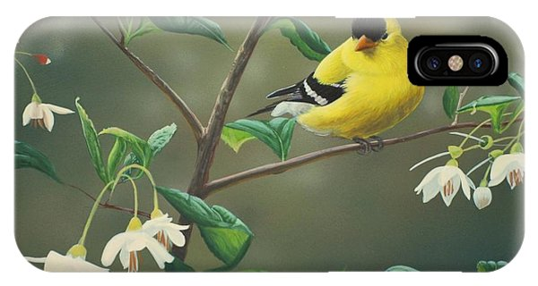 Finch iPhone Case - Goldfinch And Snowbells by Peter Mathios