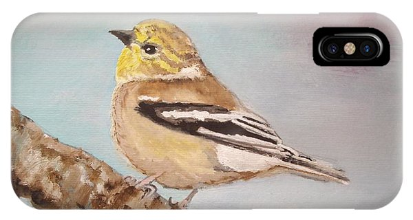 Goldfinch In Winter Plumage IPhone Case