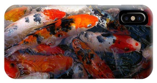 Goldfish Shimmer IPhone Case