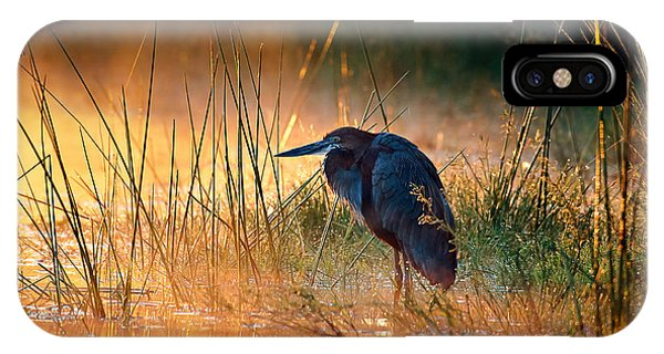 Horizontal iPhone Case - Goliath Heron With Sunrise Over Misty River by Johan Swanepoel