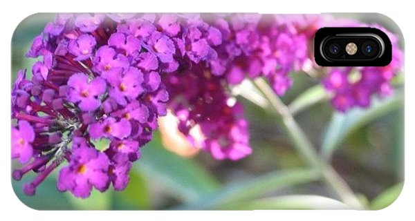 Edit iPhone Case - Good Morning Purple Butterfly Bush by Anna Porter