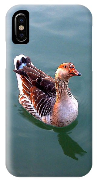 Goose IPhone Case