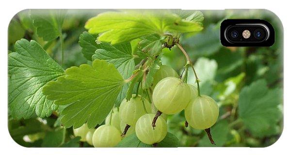 Gooseberries IPhone Case