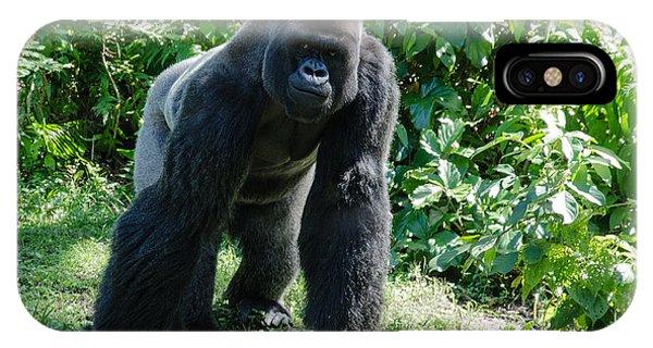 Gorilla In The Midst IPhone Case