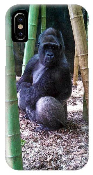 Gorilla Lincoln Park Zoo IPhone Case