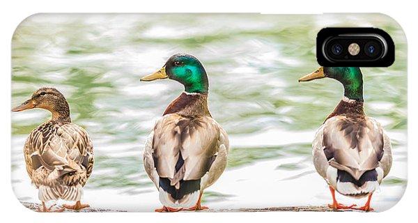 Got My Ducks In A Row IPhone Case