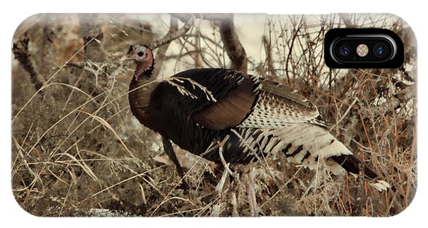 Gould's Wild Turkey Xii IPhone Case