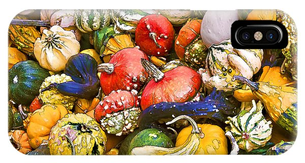 Gourds And Pumpkins At The Farmers Market IPhone Case