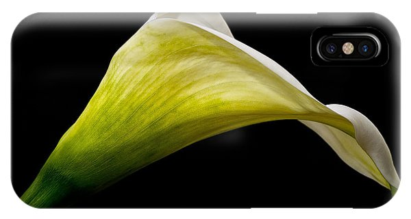 Graceful Curves IPhone Case