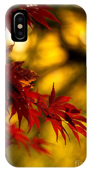 Graceful Leaves IPhone Case