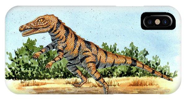 Gracilisuchus Prehistoric Crocodile Phone Case by Deagostini/uig
