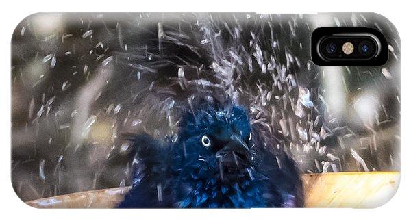 Grackle Bath IPhone Case