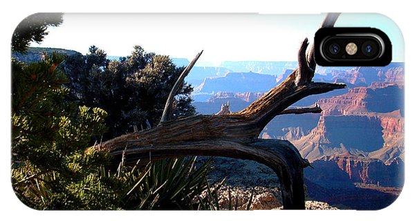 Grand Canyon Dead Tree IPhone Case