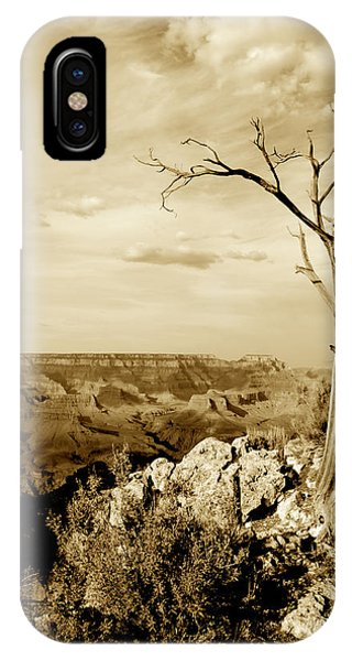 Grand Canyon Sepia Phone Case by T C Brown