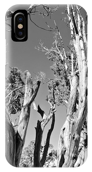 Grand Canyon Trees IPhone Case