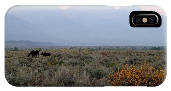 Rocky Mountain Np iPhone Case - Grand Teton Moose by Brian Harig