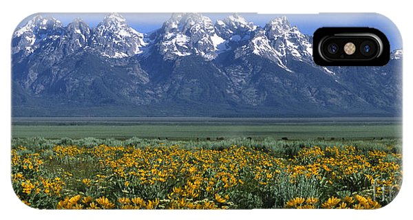 Grand Teton Summer IPhone Case