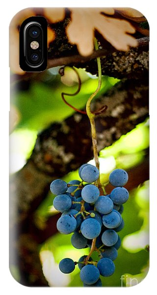 Grape Cluster IPhone Case