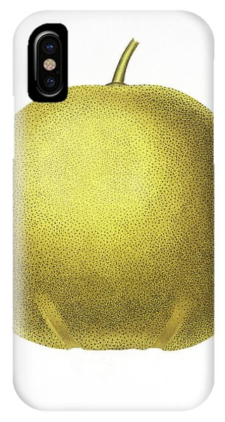 Grapefruit iPhone Case - Grapefruit by Natural History Museum, London/science Photo Library