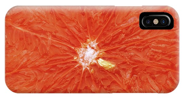 Grapefruit iPhone Case - Grapefruit Sliced In Two by Steve Percival/science Photo Library