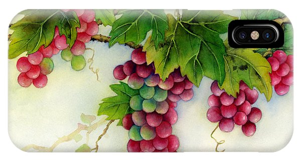 Green Grape iPhone Case - Grapes by Hailey E Herrera