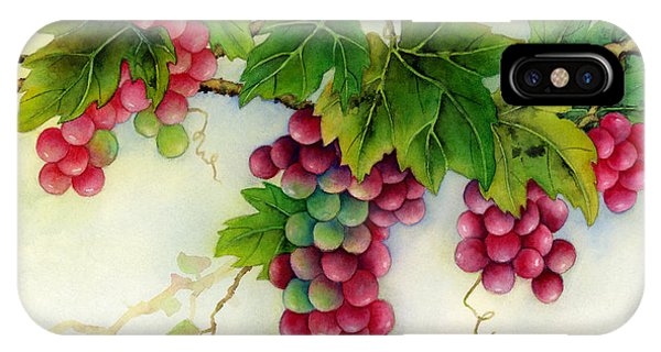 Agriculture iPhone Case - Grapes by Hailey E Herrera