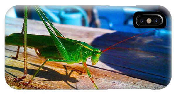 Grass Hopper IPhone Case