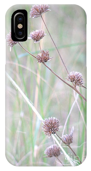 Grasses And Seeds IPhone Case