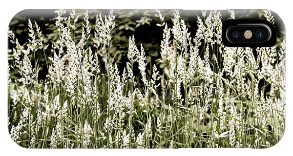 Grasses In White IPhone Case