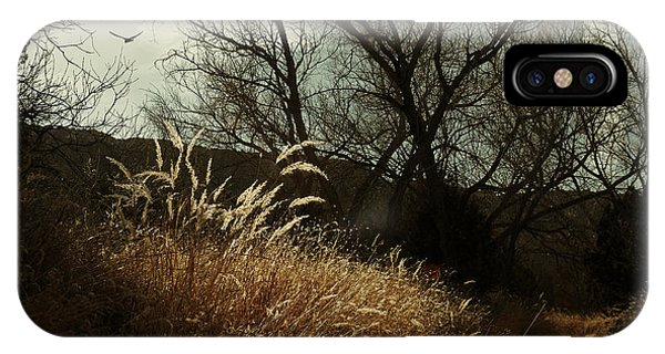 Grasses Of Winter IPhone Case