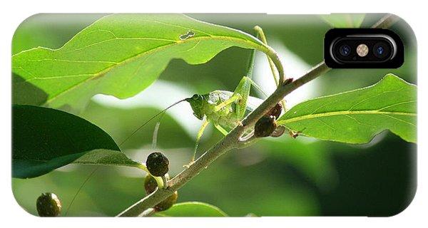 Grasshopper Portrait IPhone Case