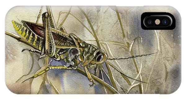 Grasshopper Watercolor IPhone Case